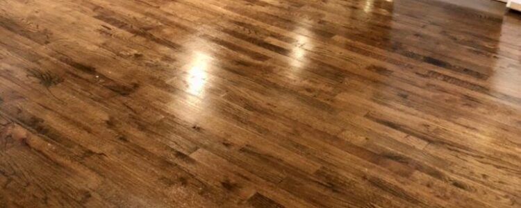 Dailey's Carpet Cleaning Wood Floor Restoration